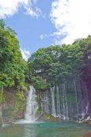 白糸の滝 02332000365| 写真素材・ストックフォト・画像・イラスト素材|アマナイメージズ