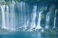 初夏の白糸の滝 02335000243| 写真素材・ストックフォト・画像・イラスト素材|アマナイメージズ