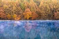 秋の御射鹿池 02335004911  写真素材・ストックフォト・画像・イラスト素材 アマナイメージズ