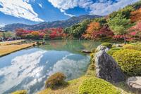秋の天龍寺曹源池庭園