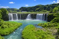 初夏の原尻の滝