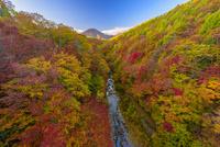 秋の裏磐梯中津川渓谷