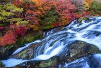 秋の奥日光竜頭の滝 02335008667  写真素材・ストックフォト・画像・イラスト素材 アマナイメージズ
