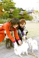 公園で犬と遊ぶ二人の女性