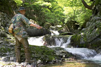 渓流釣りをするシニア男性 02336002192| 写真素材・ストックフォト・画像・イラスト素材|アマナイメージズ
