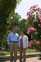 庭園のバラの花とシニア夫婦