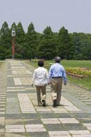 公園を散歩するシニア夫婦の後姿 02336002320| 写真素材・ストックフォト・画像・イラスト素材|アマナイメージズ