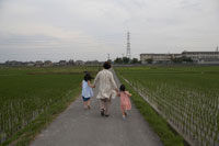 畦道を歩くおばあちゃんと孫 02336002358A| 写真素材・ストックフォト・画像・イラスト素材|アマナイメージズ