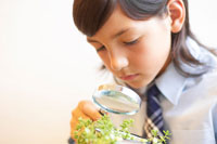 ルーペで植物を観察する女の子