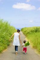 大きな葉を持って歩く男の子と母親の後ろ姿