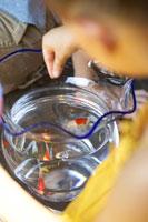 金魚に餌をあげる女の子の手のアップ