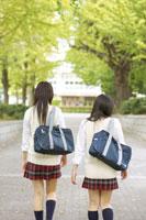 女子高校生の通学風景