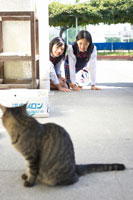 猫を見る2人の女子中学生