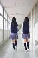 学校の廊下を歩く2人の女子中学生の後ろ姿