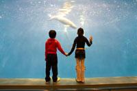 水槽前で手を繋ぐ女の子と男の子