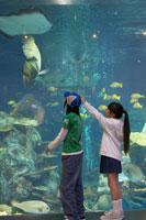 水族館で魚を見る男の子と女の子 02336004044| 写真素材・ストックフォト・画像・イラスト素材|アマナイメージズ