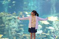 水槽のきれいな魚を見る女の子 02336004047| 写真素材・ストックフォト・画像・イラスト素材|アマナイメージズ