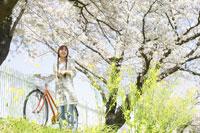 桜並木と自転車の前で立つ女性