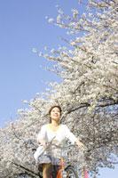 桜並木を自転車で走る女性