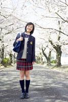 桜の並木道に立つ女子中学生