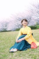 桜の前の芝生に座る袴姿の女子大学生