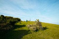 丘で遊ぶ家族 02336004829| 写真素材・ストックフォト・画像・イラスト素材|アマナイメージズ