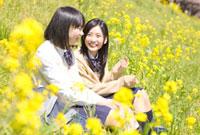菜の花と女子高校生2人