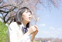 綿毛を吹く女子高校生 02336005606| 写真素材・ストックフォト・画像・イラスト素材|アマナイメージズ