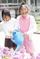 花壇に水をあげる小学生の女の子