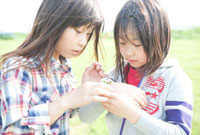 シロツメグサの腕輪を作る二人の女の子