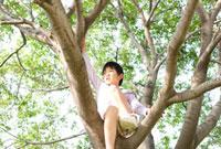 木の上に座っている男の子