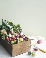 箱に入った地域農家直送野菜(CSA:Community Supported Agriculture)