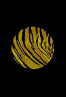 虎柄の円 02342000030| 写真素材・ストックフォト・画像・イラスト素材|アマナイメージズ