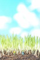 畑を耕すミニチュア人形