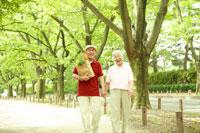 買い物袋を持って並木道を歩くシニア夫婦