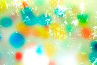 カラフルな泡と写り込んだ緑の葉
