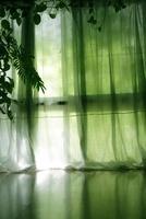 カーテンと窓と植物