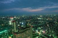 西新宿の夜景 02350000364| 写真素材・ストックフォト・画像・イラスト素材|アマナイメージズ