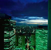 西新宿のビル群の夜景 02350000413| 写真素材・ストックフォト・画像・イラスト素材|アマナイメージズ