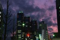 甲州街道新宿付近から見る新宿パークタワー 02350000444| 写真素材・ストックフォト・画像・イラスト素材|アマナイメージズ