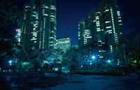 新宿の夜景 02350000486| 写真素材・ストックフォト・画像・イラスト素材|アマナイメージズ