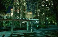 新宿中央公園 02350000575| 写真素材・ストックフォト・画像・イラスト素材|アマナイメージズ