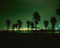 潮風公園の夜景