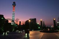 山下公園から見るマリンタワーのライトアップ