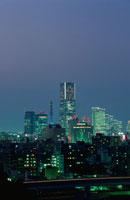唐沢公園から見たみなとみらいの夜景