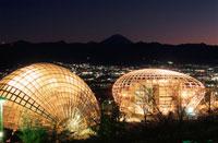 公園と富士山と甲府盆地の夜景 02350001313| 写真素材・ストックフォト・画像・イラスト素材|アマナイメージズ