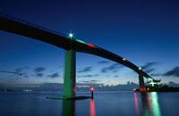 中の島大橋のライトアップ 02350001475| 写真素材・ストックフォト・画像・イラスト素材|アマナイメージズ