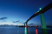 中の島大橋のライトアップ 02350001476| 写真素材・ストックフォト・画像・イラスト素材|アマナイメージズ