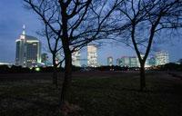 幕張海浜公園とビル群の夜景 02350001533| 写真素材・ストックフォト・画像・イラスト素材|アマナイメージズ