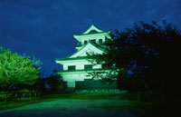 城山公園のライトアップ 02350001540| 写真素材・ストックフォト・画像・イラスト素材|アマナイメージズ